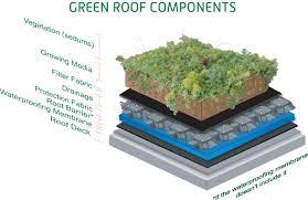 Green Home Design Tips by Diy Diy Green Roof Home Design Furniture Decorating Marvelous
