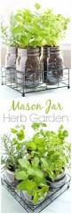 easiest herbs to grow indoors infographic herbs and gardens