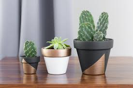 Modern Houseplants by Mini Painted Plant Pots