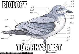 Science Memes - michelle wcisel on twitter the best science memes https t co
