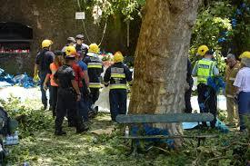 falling tree kills 13 at religious festival in portugal ktla