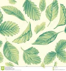 seamless pattern with leaves drawing with pencils stock