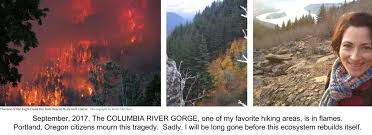 Wild Fire Columbia Gorge by Smoke U0026 Ash From Nearby Forest Fires Fall In Portland Or