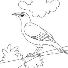 cute baby birds flying coloring pages litle pups