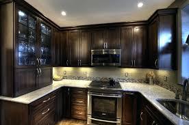 Kitchen Backsplash Accent Tile Backsplash Ideas Kitchen Glass Ideas Kitchen Traditional With
