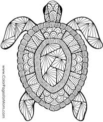 printable birthday cards with turtles coloring printable free printable coloring pages of animals free