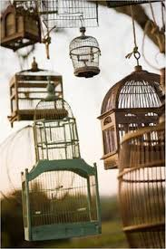 ornamental bird cages in gallery bird cages for sale