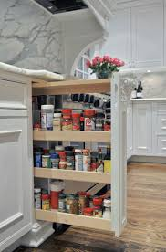 Roll Out Spice Racks For Kitchen Cabinets 12 Best Pull Out Spice Racks Images On Pinterest Spice Racks