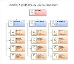 business organizational chart hitecauto us