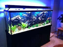 aquarium decorations for sale – aquarafo