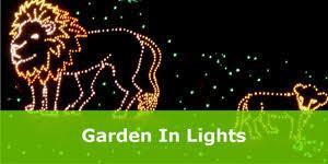 annmarie garden in lights experience unique events annmarie sculpture garden arts center