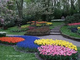 flower garden in amsterdam keukenhof flower garden a kingdom of tulips youramazingplaces com