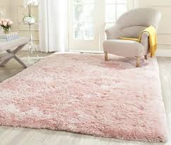 Light Pink Area Rugs Pink Area Rug Light Pink Area Rug 8 10 Thelittlelittle