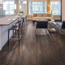 Laminate Flooring Baltimore Pergo Xp Warm Chestnut 10 Mm Thick X 7 1 2 In Wide X 54 11 32 In