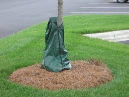 bags glamorous tree watering bag netting image tree watering bag