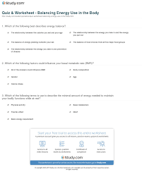 quiz u0026 worksheet balancing energy use in the body study com