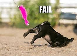 Sad Pug Meme - pug meme archives page 2 of 18 pug meme funny cute pugs