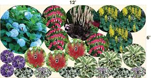 Garden Plans Zone - download shade plants for zone 9 solidaria garden