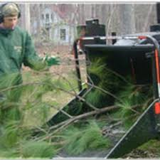 browns tree brown s tree service tree services 5104 yachtsman ct raleigh