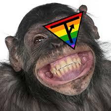 turd flinging monkey youtube