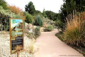 native plants of south dakota native plants janet davis explores colour
