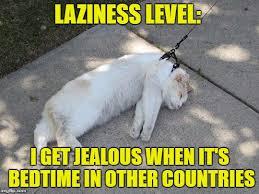 Lazy Meme - lazy and jealous imgflip