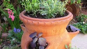 mountain gardening recipe for a culinary herb garden
