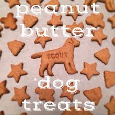 recipe for dog treats dog treats recipe peanut butter dog treats