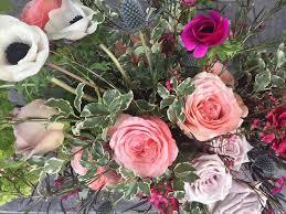 flowers in november november blooms home facebook