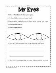 the five senses worksheetsworksheets