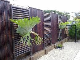 jardin cloture superbe cloture de separation jardin 6 cl244ture en bambou pour