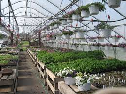 Inside Greenhouse Ideas by Bulletin 1022 Maine Season Extension Options Making The Right