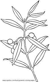 best photos of olive coloring pages olive clip art coloring page