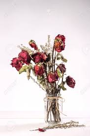 dried roses bouquet of dried roses in glass vase on white background stock