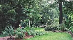 memorial phlets sles cohn memorial arboretum a brec facility