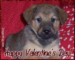 Cute Valentines Memes - be my valentine glitter graphics comments gifs memes and