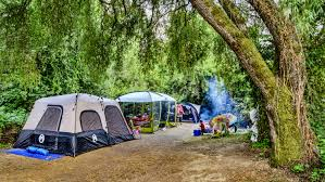 thanksgiving camping california casini ranch family campground