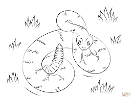 unbelievable printable rattlesnake coloring page with snake