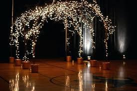lighted tree branches lighted tree branches home decor outdo accessies home decorators