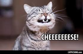 Smile Memes - smiling memes image memes at relatably com