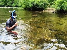 Tennessee snorkeling images Chattahoochee oconee national forests home jpg