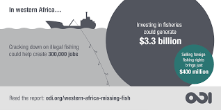 western africa u0027s missing fish the impacts of illegal unreported