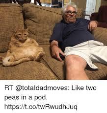 Two Peas In A Pod Meme - rt like two peas in a pod httpstcotwrwudhjuq meme on sizzle