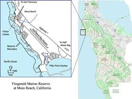 california map half moon bay visit the tidepools friends of fitzgerald marine reserve