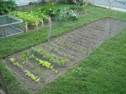 garden update u2013 9 13 12 the year round harvest