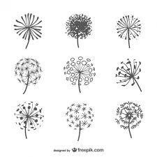 Flower Drawings Black And White - best 25 dandelion drawing ideas on pinterest doodle ideas