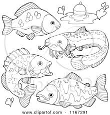 freshwater fish coloring pages draw background freshwater fish
