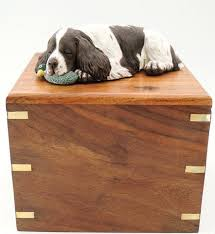 dog urns dog urns pet urns cavacast pet portraits sculpture