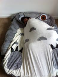 Giant Totoro Bed My Gf Ordered A Totoro Bed Album On Imgur