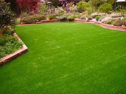 Arizona Backyard Landscaping by Green Lawn Tonto Basin Arizona Backyard Deck Ideas Backyard Ideas